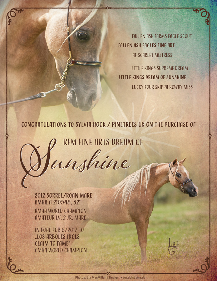 Sunshine has been sold 1