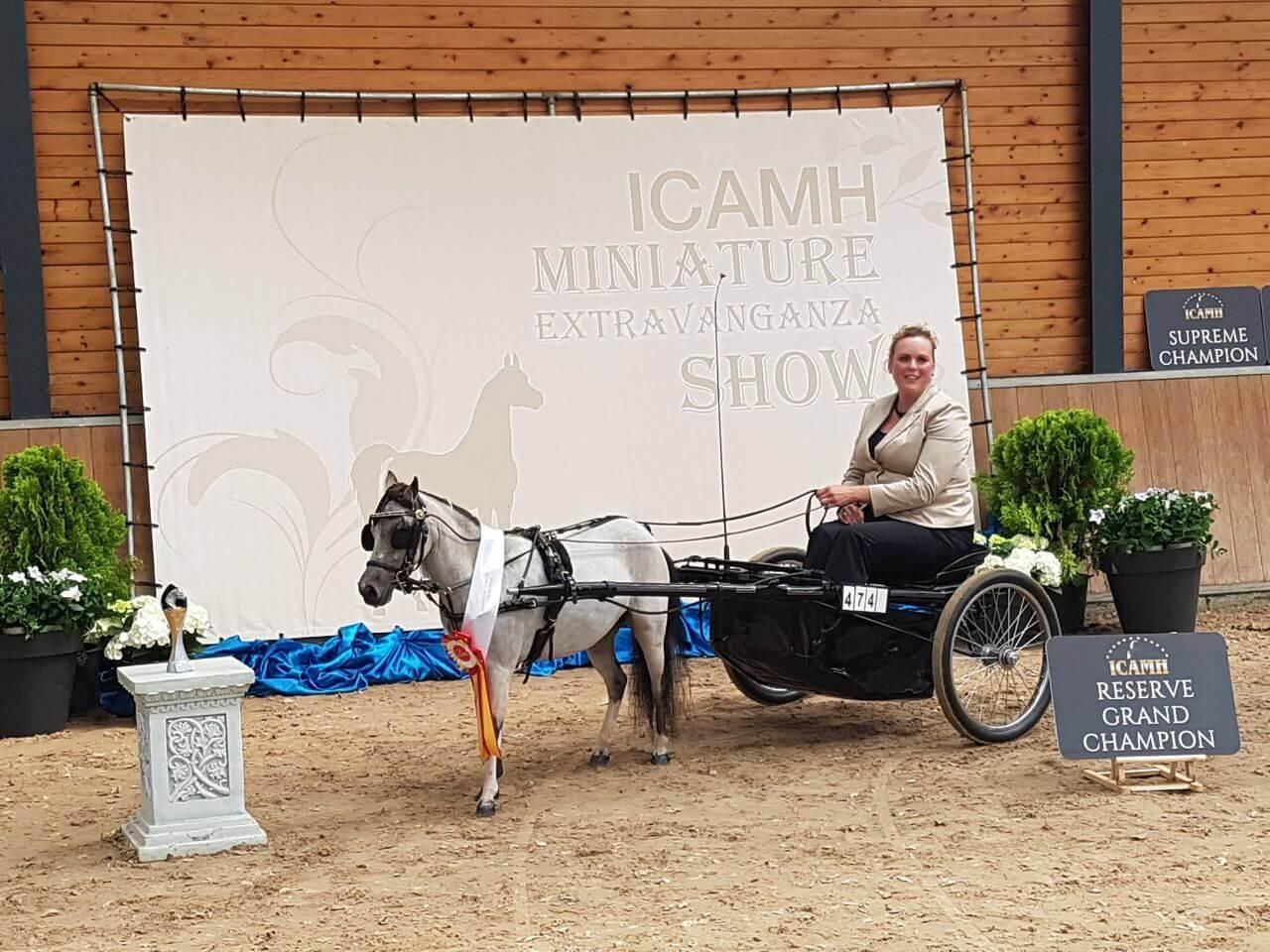 ICAMH Extravaganza Show 2017