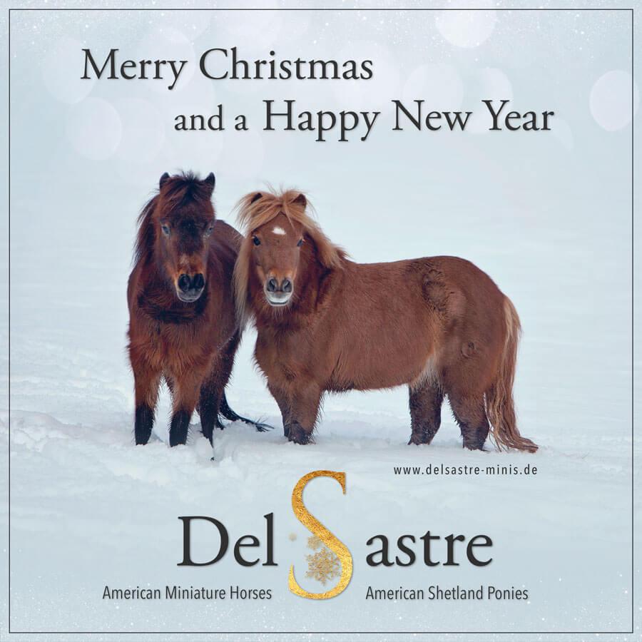 Frohe Festtage und ein gutes neues Jahr