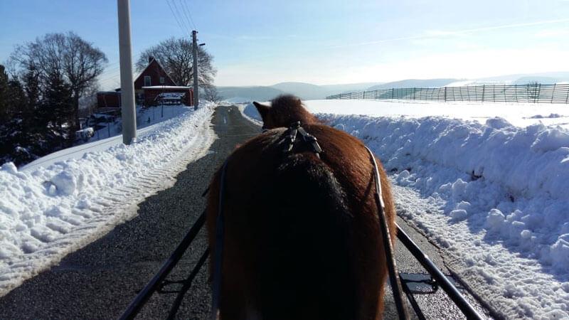 Schnell noch ein paar Winterfotos... 1
