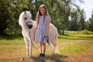 Amerikanische Miniaturpferde zu verkaufen 6